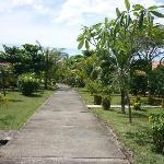 Giardino tropicale Flor de Pacifico