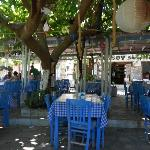 Tables under a canopy of vine leaves ...