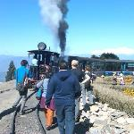 Toy Train a major attraction to Foreign Tourists