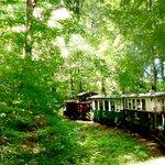 schmalspurbahn nationalpark miskolc,ungarn