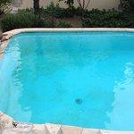 algues dans la piscine non nettoyée