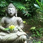 Buddha sits outside of the yoga studio