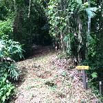 Hiking trails are all over the property. Take a walking stick from the front desk.