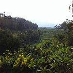 Uitzicht Batur Indah Homestaying