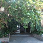 entrance - entrée