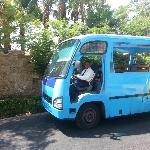 Bus Taf - TafH