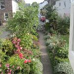View of Millstream Cottage's front garden from the red room