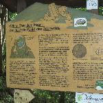 Geological info