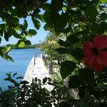 Marina view.