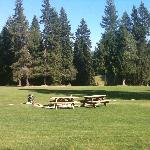Front lawn, picnic area with a view of one of the many meadows in the distance