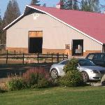 Horse barn - very spacious for getting started on a ride