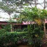 l'annexe, le patio