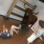 My boys hamming it up for the camera ! Another actual bull from a past festival.
