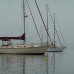 Saorsa on anchor
