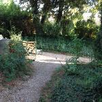 petit jardin extérieur