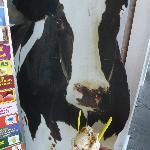 Cow decoration w/ MY ice cream at Ice Cream Store