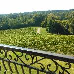 private balcony view of vineyards off the bedroom and living room