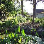 Carriage House pond