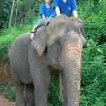 exercise for elephant and us as well ;D