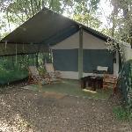 tent #8