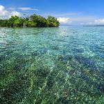 Incredible snorkeling