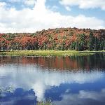 Glenview Pond on hiking trail