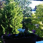 Primrose Guesthouse | 34 Primrose Gardens, London NW3 4TN, England