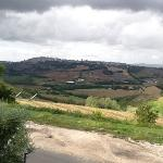 местный пейзаж