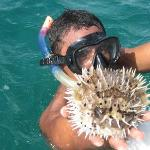 Andres showing a puffer fish
