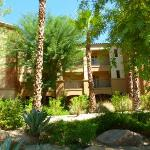 Marriott Shadow Ridge Resort Villa