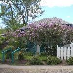 Shrew's Cottage