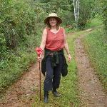 my flower hiking stick, on the farm tour
