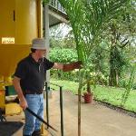 Pablo, our host at the cocoa ranch. This palm plant became lunch.