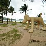 パトンビーチの犬