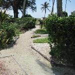 We love the beach paths!