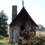 cabane des oiseaux