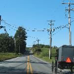 Amish dans la campagne