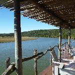 View down the Bushman River