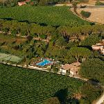 vista delle vigne dall'alto - our vineyards by the sky