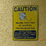 Stingray Caution sign