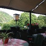 Back patio along the Rhine. Beautiful flowers everywhere!