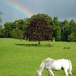 Rainbow after a brief Ireland shower