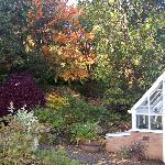 Early autumn in the garden