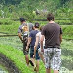 sensation unique : balade dans les rizières