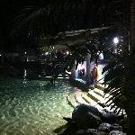 pool area at night/ swim up bar area