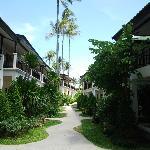 sentier de l'hôtel