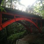 入口付近からゴルフ橋を撮影