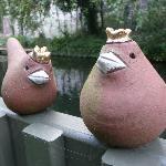 terrace king robins