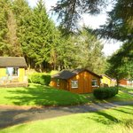 View of our Conifer Lodge