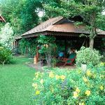 Bungalows, Garden, Viang Yonok Hotel Chiang Saen Thailand